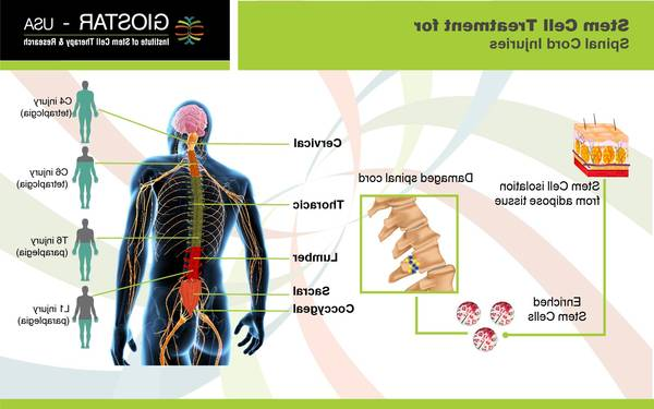 arthritis-treatment-5f2918ac01e80