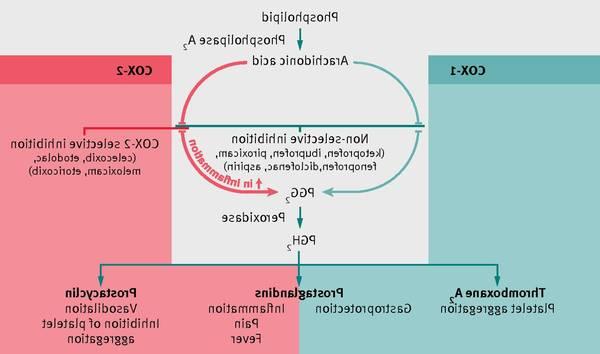 cure-arthritis-5f29179dd3a4b